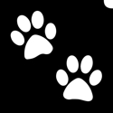 Picture of Emoji Paws - (5pc pack)