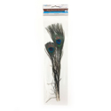 Picture of Real Peacock Feather 10''-14'' - (2pc)