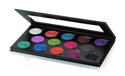 Picture of Ben Nye Pearl Sheen - Dynamic Palette (PSP-02)